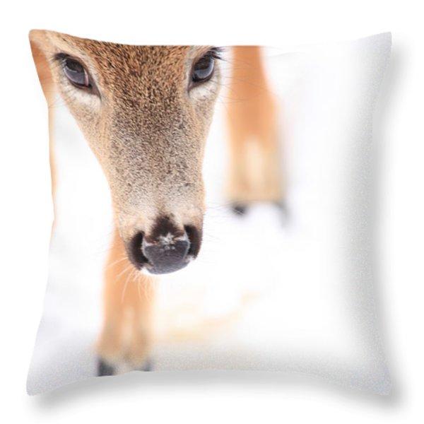 Innocent Eyes Throw Pillow by Karol  Livote