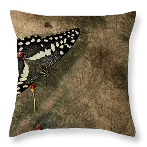 Insect Study Number 30 Throw Pillow by Floyd Menezes
