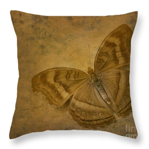 Insect Study Number 94 Throw Pillow by Floyd Menezes
