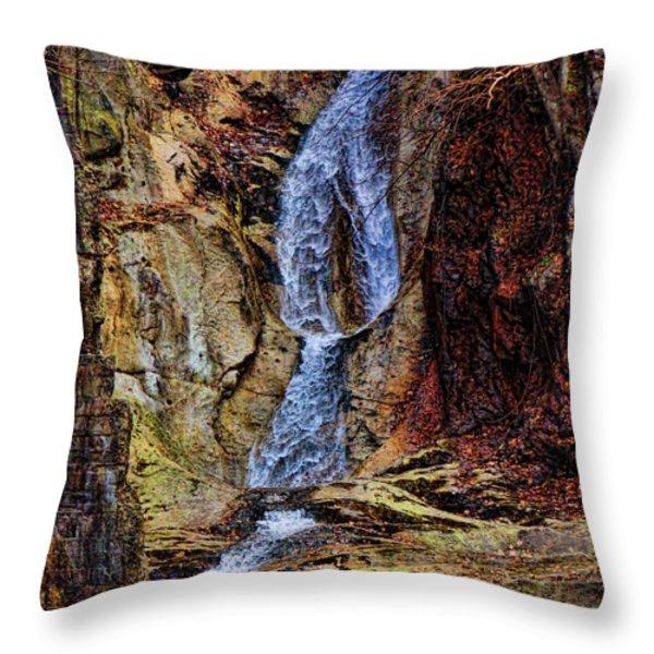 Inside Buttermilk Falls Throw Pillow by Pamela Phelps