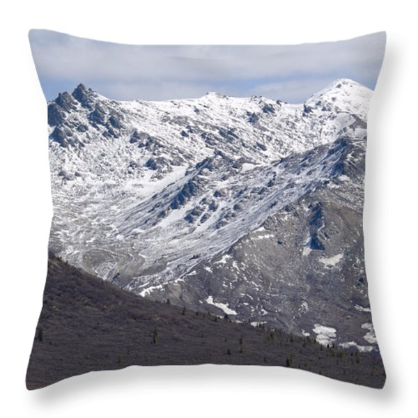 Inside Denali National Park 2 Throw Pillow by Tara Lynn