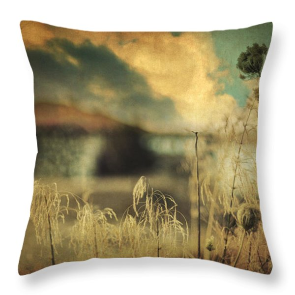 Into Deep Sleep Throw Pillow by Taylan Soyturk