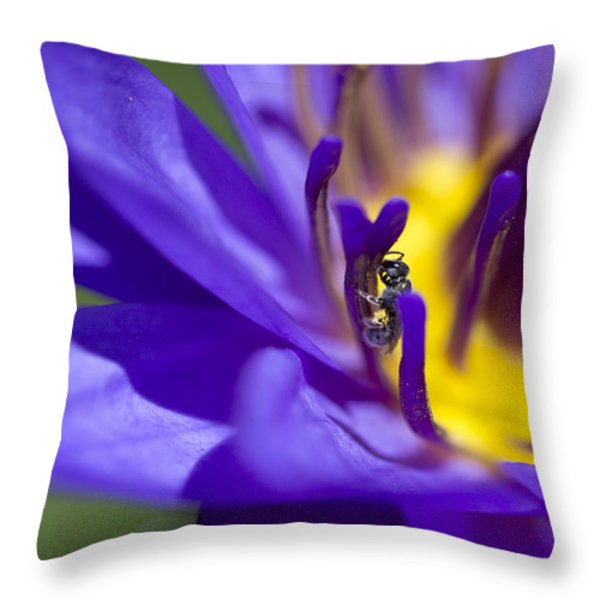 Into The Blue Throw Pillow by Priya Ghose