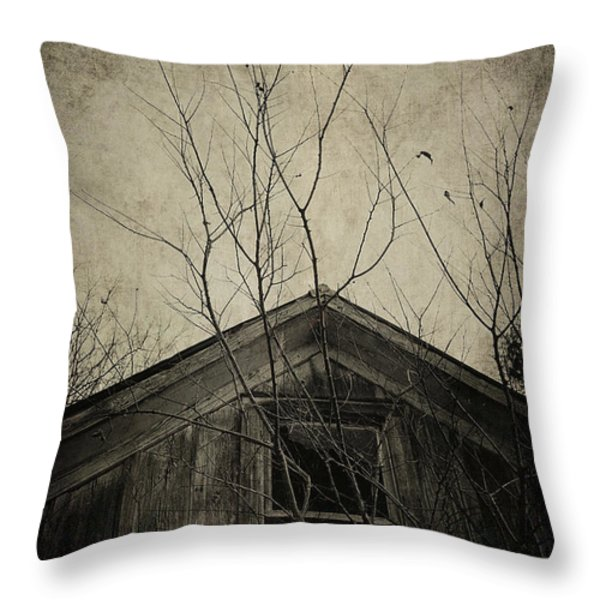 Into the Dark Past Throw Pillow by Trish Mistric