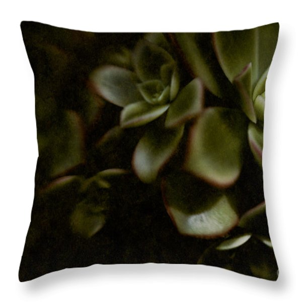 Into the Light Throw Pillow by Venetta Archer