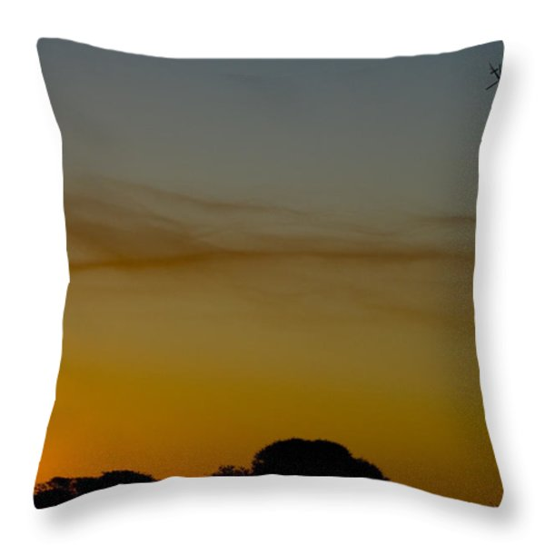 Into The Smoke Throw Pillow by Paul Job