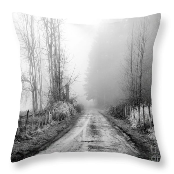 Into The Unknown Throw Pillow by Rory Sagner