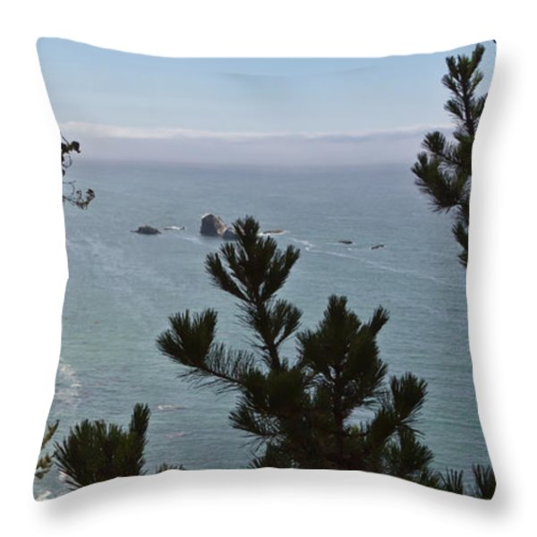 Into The Wild Blue Throw Pillow by Heidi Smith