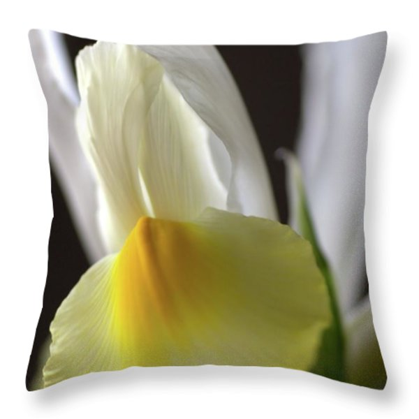 Iris Flower Throw Pillow by Joy Watson
