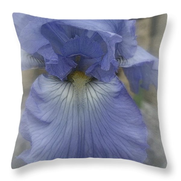 Iris Heart Throw Pillow by Kay Novy