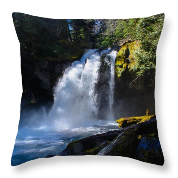 Iron Creek Falls Throw Pillow by Roger Reeves  and Terrie Heslop