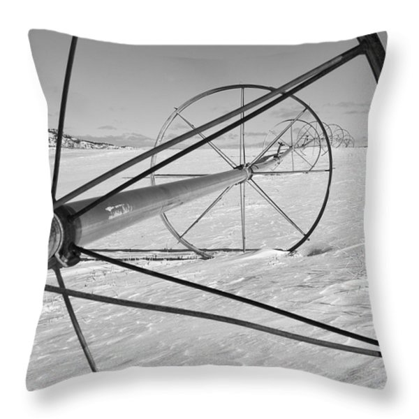 IRRIGATION PIPE IN WINTER Throw Pillow by Theresa Tahara