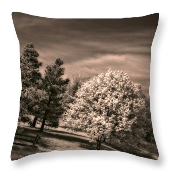 ...is But A Dream Throw Pillow by Steve Harrington
