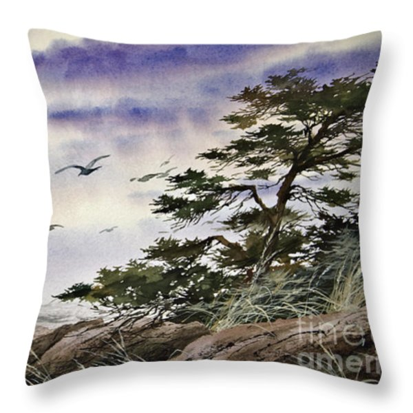 Island Sunset Throw Pillow by James Williamson