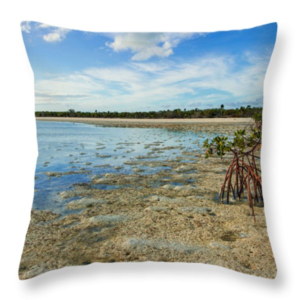 Isolated Throw Pillow by Chad Dutson