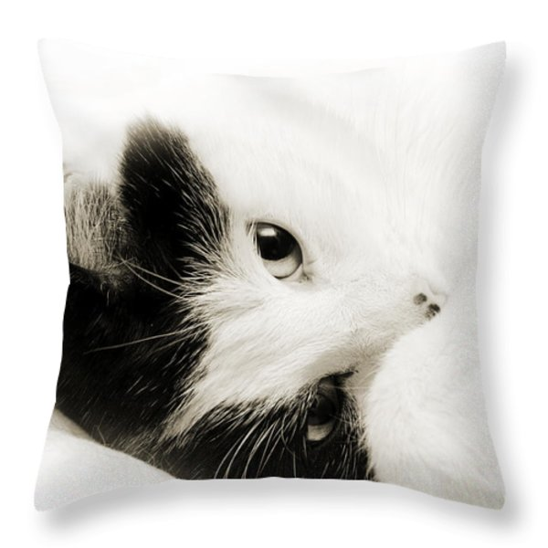 It Is Hard To Be So Cute Throw Pillow by Andee Design