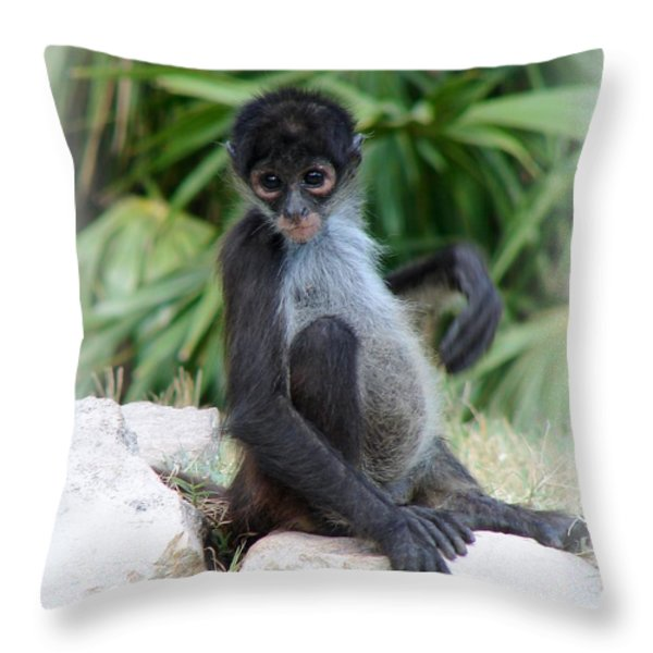 Itchy Belly Throw Pillow by Patrick Witz