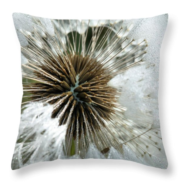 Its A Small World Throw Pillow by JC Findley
