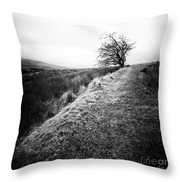 Its Hard To Imagine Throw Pillow by John Farnan