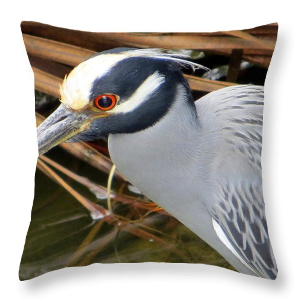 I've Got My Red Eye On You Throw Pillow by Dorothy Menera