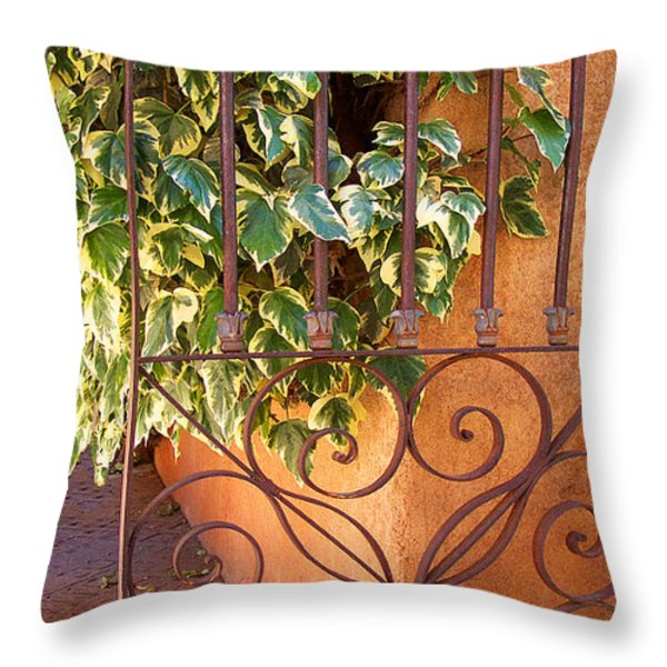 Ivy And Old Iron Gate Throw Pillow by Ben and Raisa Gertsberg