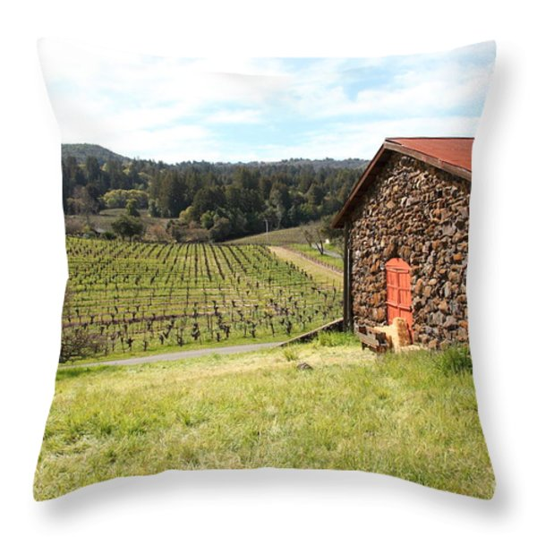 Jack London Stallion Barn 5D22106 Throw Pillow by Wingsdomain Art and Photography