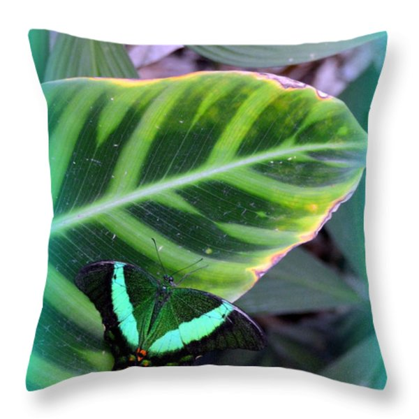 Jade Butterfly with vignette Throw Pillow by Carla Parris