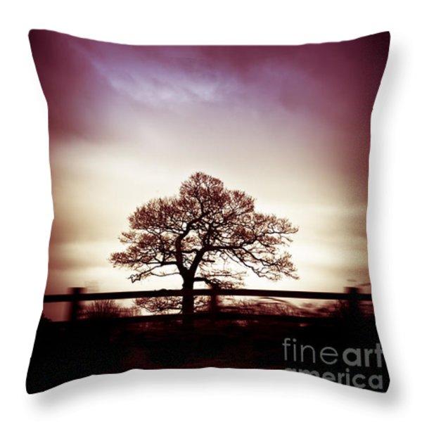 January Dusk Throw Pillow by Jan Bickerton