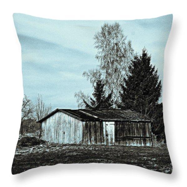 January Sadness Throw Pillow by Jutta Maria Pusl