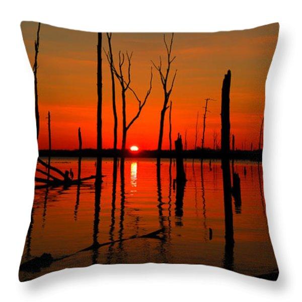 January Sunrise Throw Pillow by Raymond Salani III