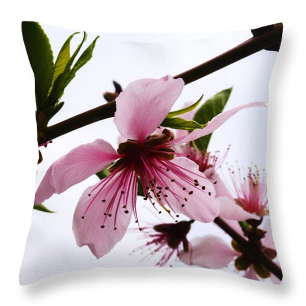 Japanese Cherry Tree Throw Pillow by Camille Lopez