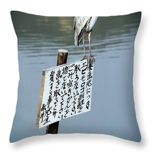 JAPANESE WATERFOWL - KYOTO JAPAN Throw Pillow by Daniel Hagerman