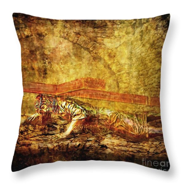 Jesus Falls Third Time Via Dolorosa 9 Throw Pillow by Lianne Schneider