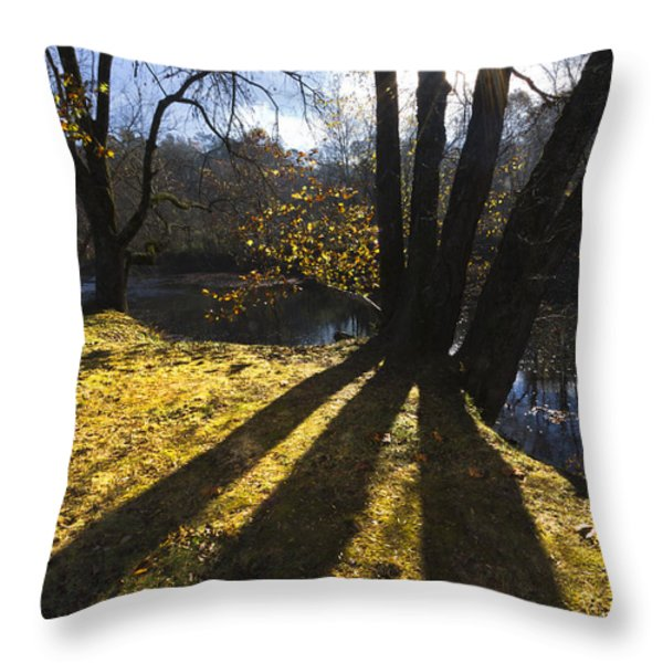 Jewel in the Trees Throw Pillow by Debra and Dave Vanderlaan