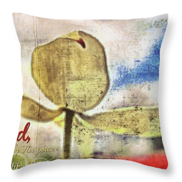 Job 36 22 Throw Pillow by Michelle Greene Wheeler