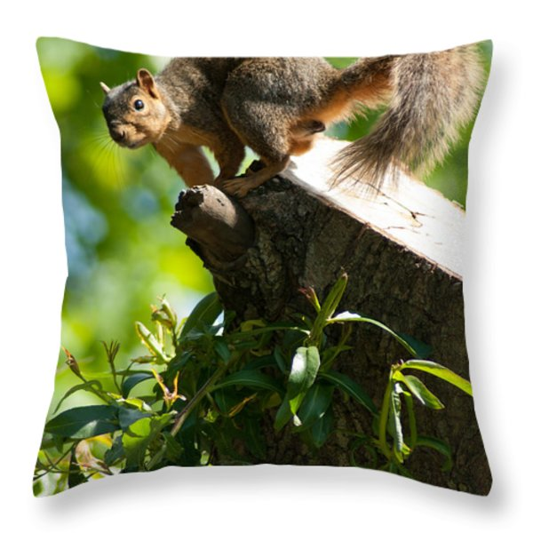 Jump Throw Pillow by Optical Playground By MP Ray