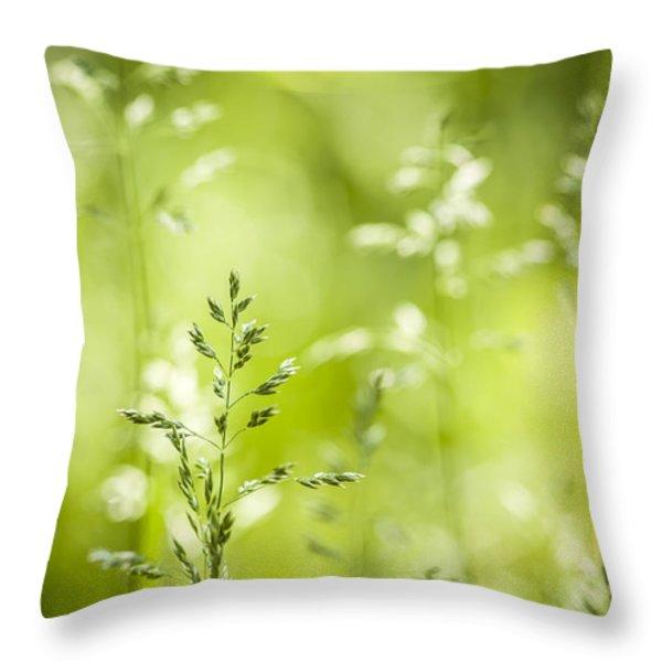 June green grass flowering Throw Pillow by Elena Elisseeva