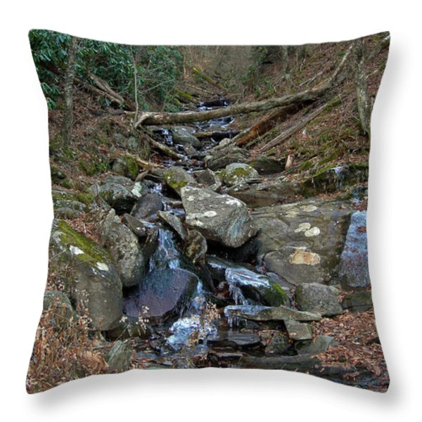 JUST A CREEK Throw Pillow by Skip Willits