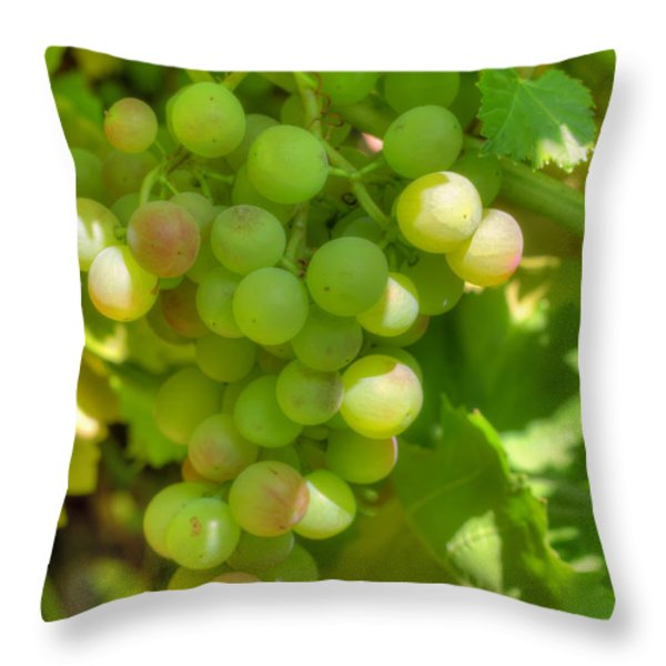 Just A Little More Time On The Vine Throw Pillow by Heidi Smith