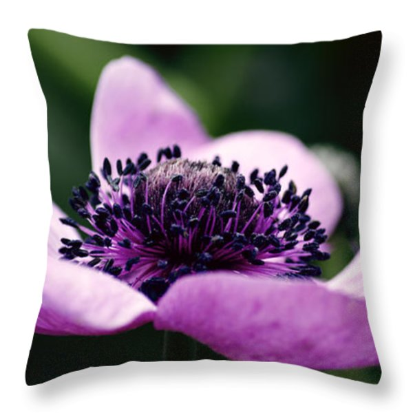 Just A Small Reach Throw Pillow by Emily Enz