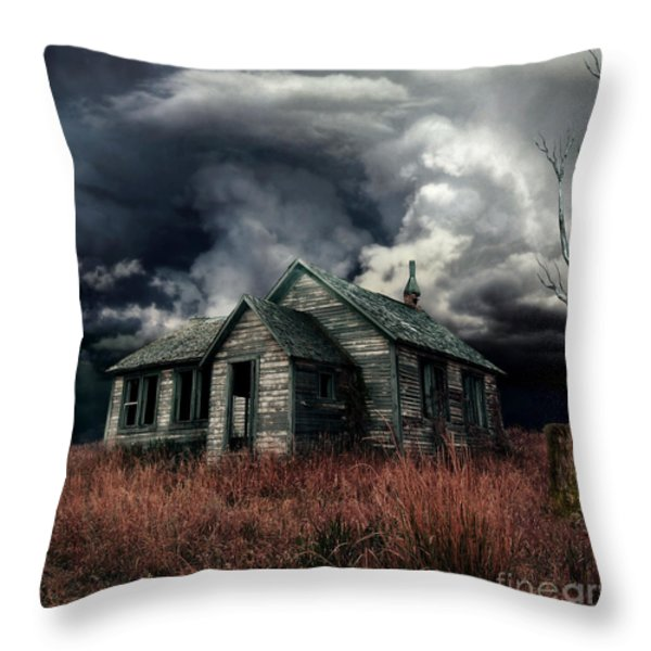 Just before the Storm Throw Pillow by Aimelle