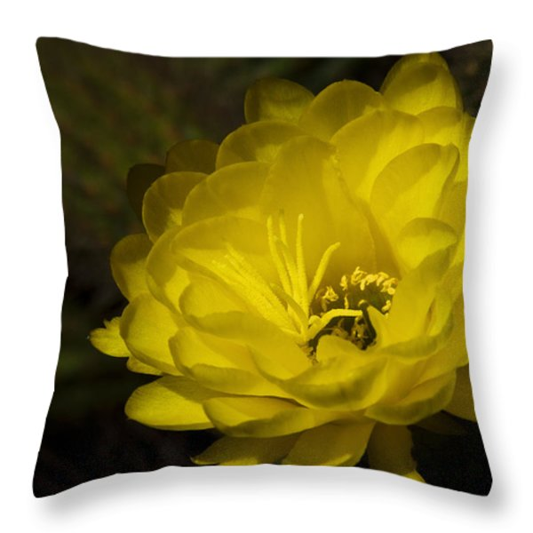 Just Call Me Mellow Yellow Throw Pillow by Saija  Lehtonen