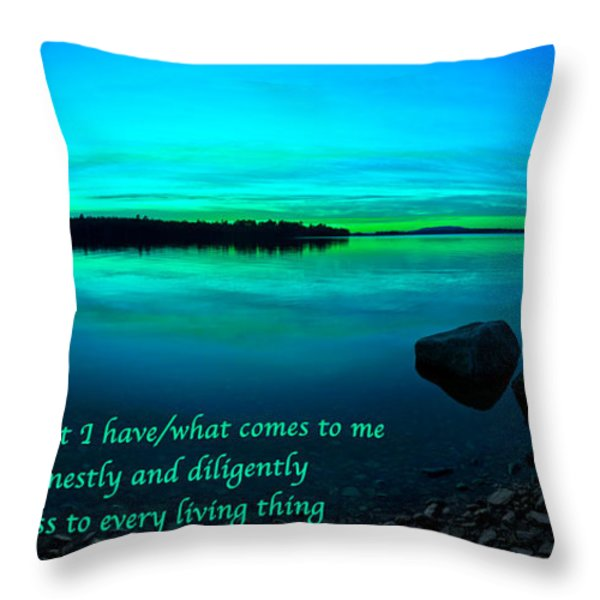 Just For Today 12 Throw Pillow by Bill Caldwell -        ABeautifulSky Photography