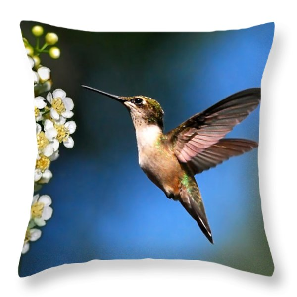 Just Looking Throw Pillow by Christina Rollo
