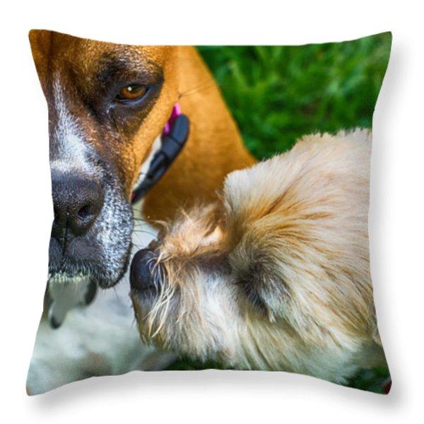 Just One Little Smooch Throw Pillow by Barry Jones