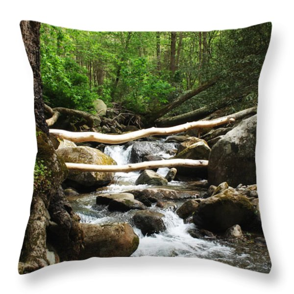 Just Outside Of Gatlinburg Throw Pillow by Mountain Dreams