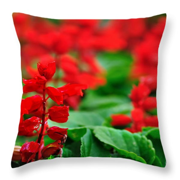 Just Red Throw Pillow by Kaye Menner