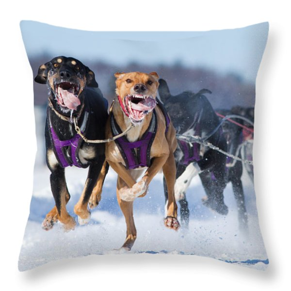 K9 Athletes Throw Pillow by Mircea Costina Photography