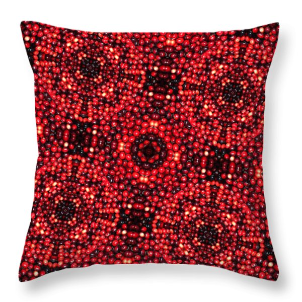 Kaleidoscope Cranberries Throw Pillow by Amy Cicconi
