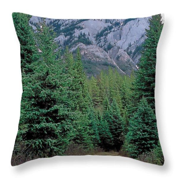 Kananaskis 3 Throw Pillow by Terry Reynoldson